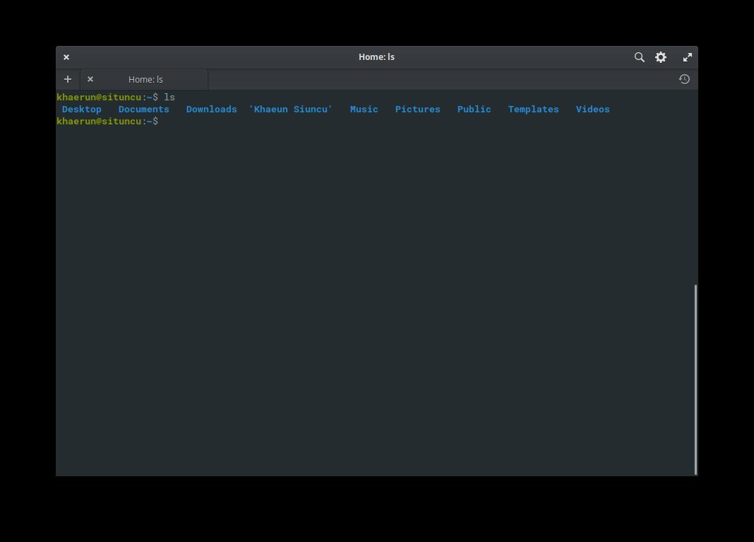 Gambar Perintah ls di Terminal Linux