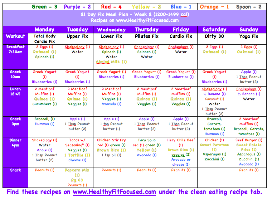 Healthy Fit And Focused Meal Plans