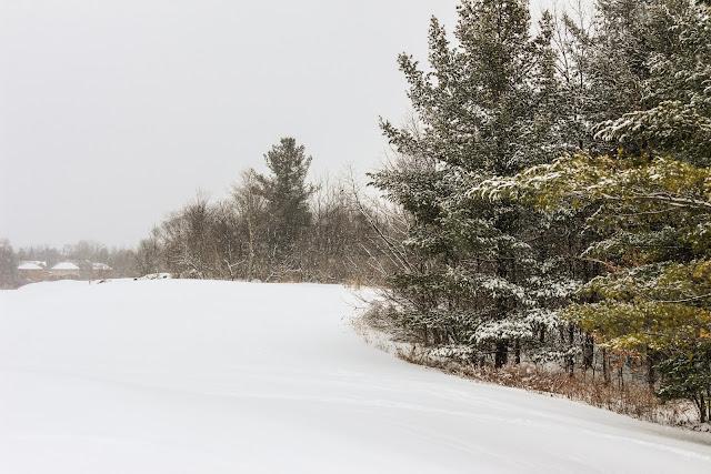 Neve no Canadá