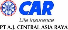 Apa Itu Asuransi Car?