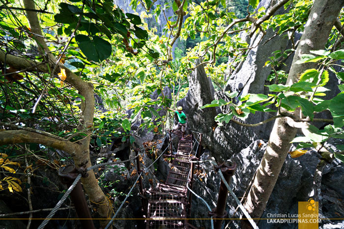 El Nido Canopy Walk Descent