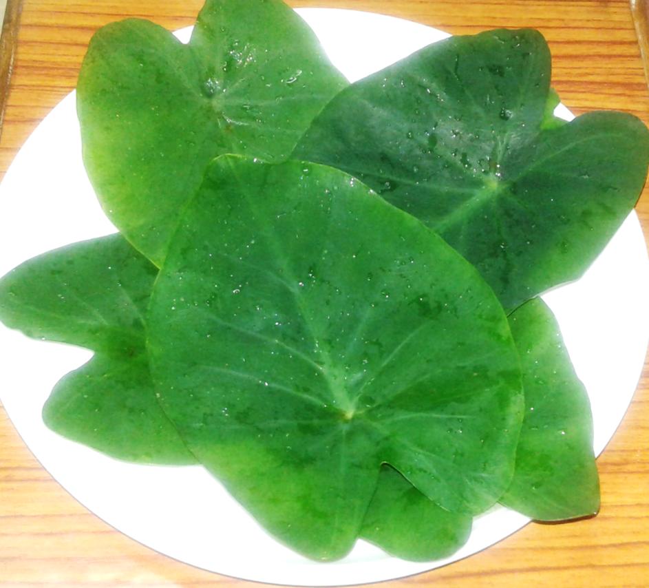 arbi leaves