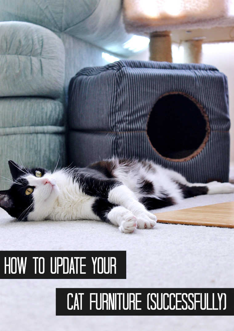 Simple tips to help transition your home into a more stylish pet furniture space. #AD