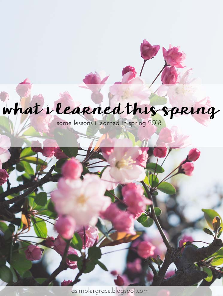 Today I'm sharing the lessons I learned this spring. #whatilearned