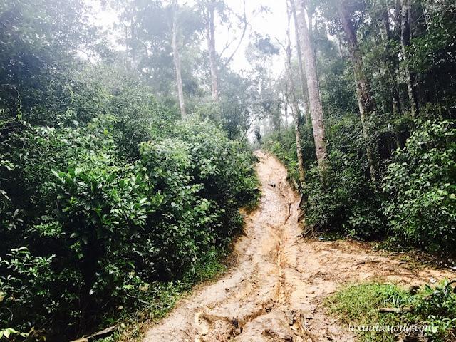 Trekking%2BTa%2BNang%2BPhan%2BDung%2B7 - Cung đường trekking Tà Năng - Phan Dũng ngày trở lại, mùa mưa 2016