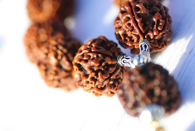 how to wear rudraksha in neck, rudraksha benefits,rudraksha for wealth and prosperity