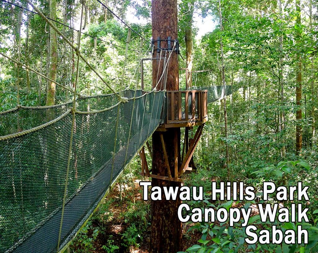 Tawau Hills Park Canopy Walk