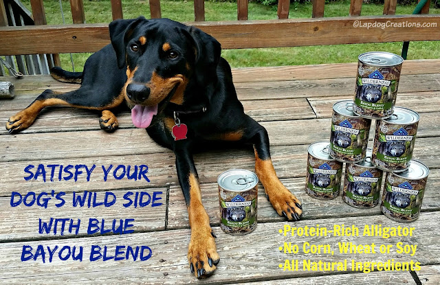 Satisfy Your Dog's Wild Side with #Blue Bayou Blend #ChewyInfluencer #DobermanMix #Alligator #DogFood ©LapdogCreations