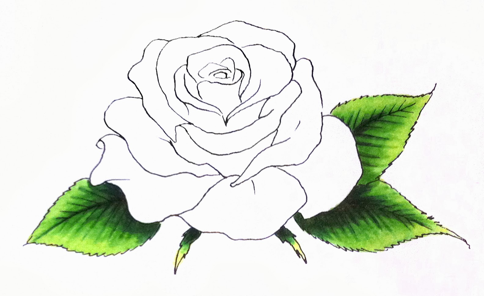 It's just an image of Dynamite Rose Petal Drawing
