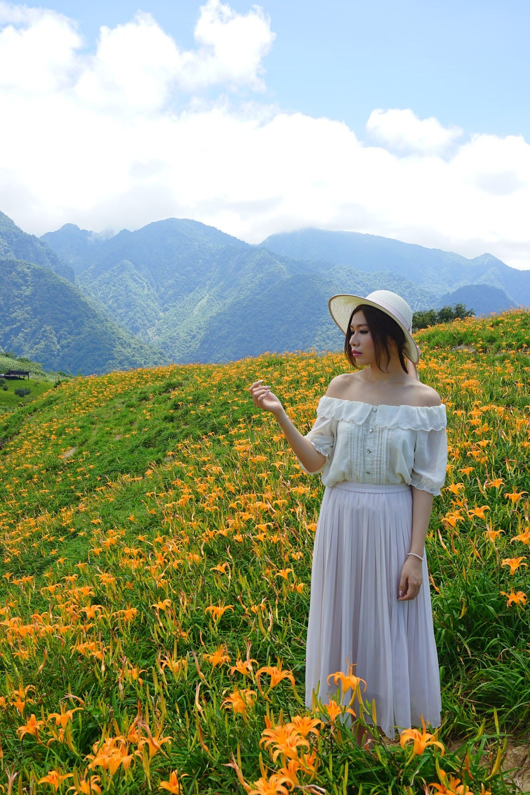 DSC00908-beautyanxiety.com-hualien-travel-liushidan-mountain-daylily-flowers