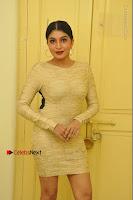 Actress Pooja Roshan Stills in Golden Short Dress at Box Movie Audio Launch  0006.JPG