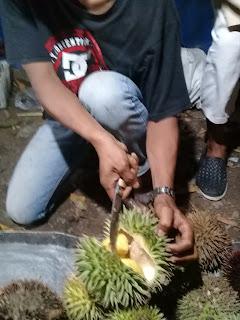 durian marawin dari kalimantan