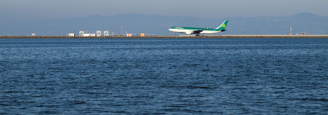 Aer Lingus plane landing at San Francisco Airport