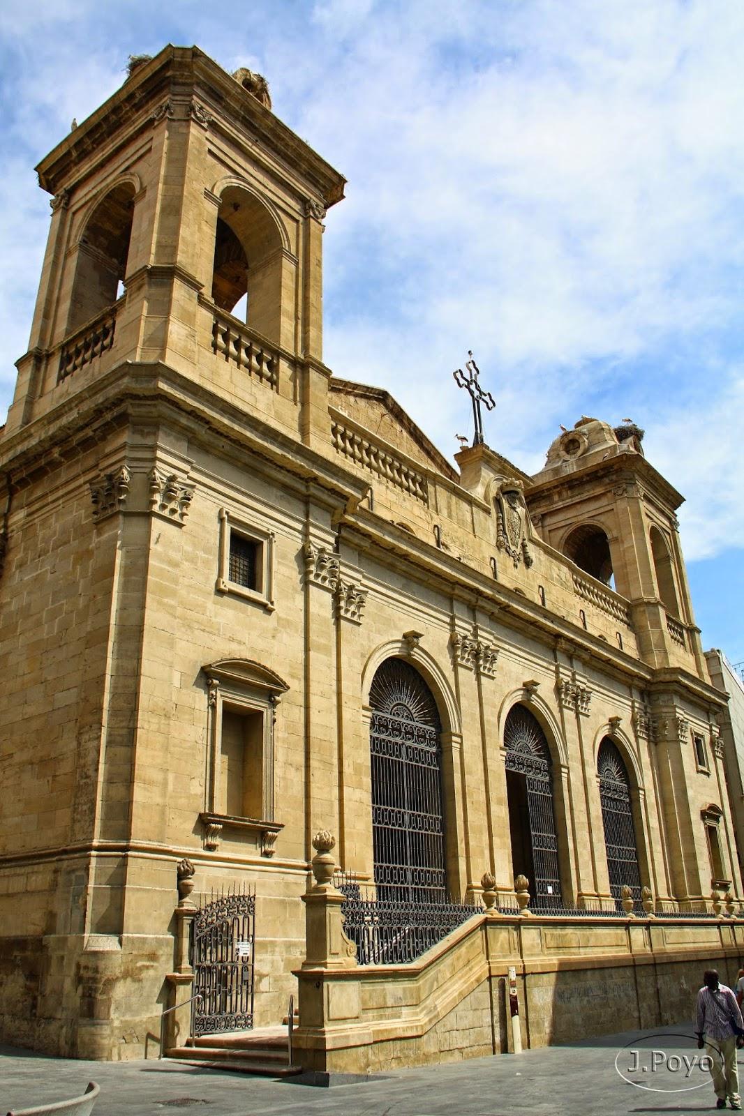 Catedral Nueva, Seu Nova de Lleida
