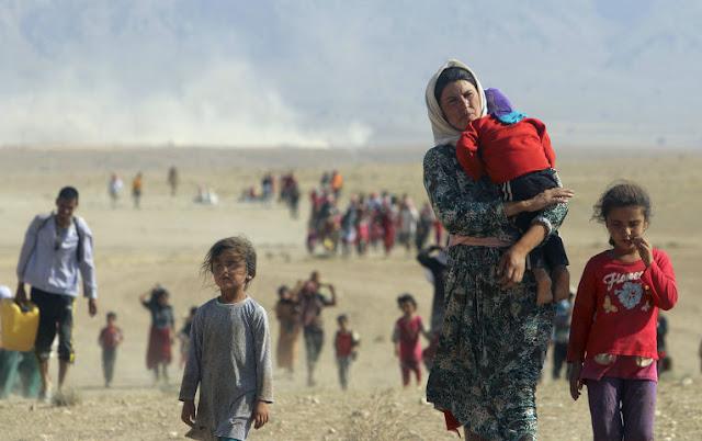 Según Índice Aurora los refugiados no son queridos