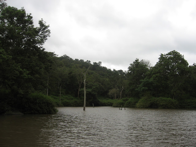 Pond near the machan, K Gudi