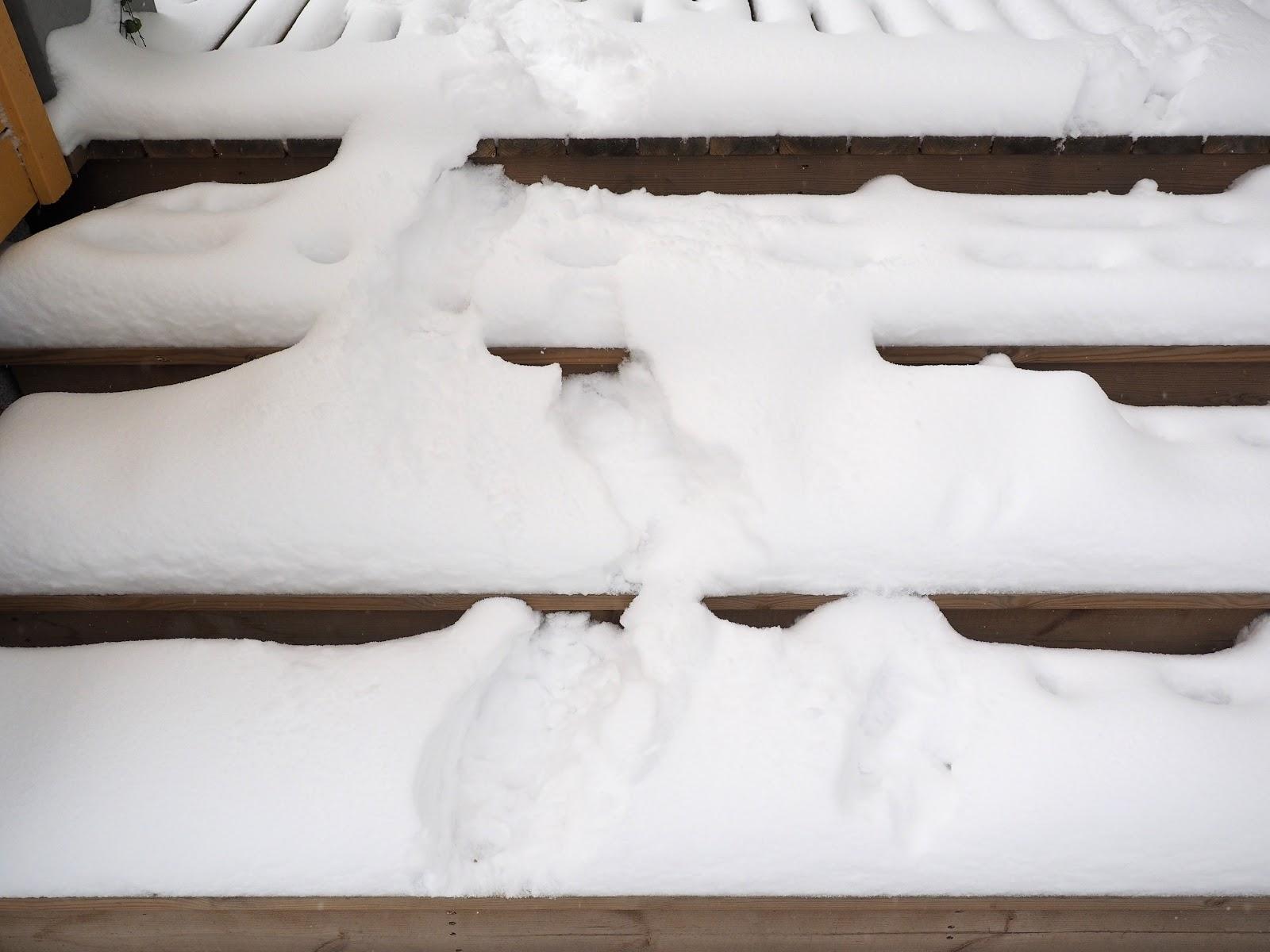 Lunta, lumi, portaat lumessa, marraskuu