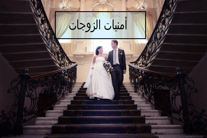 قصة مفيدة مع زوجها: أمنيات الزوجات