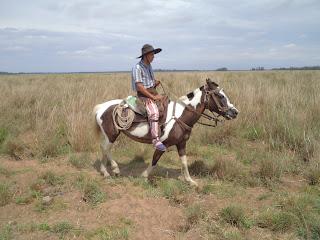 Argentiina, Corrientes, gaucho, karjanajo, working ranch, riitta reissaa