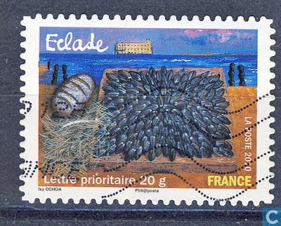 Franse mosselschotel