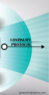 Knowledge Continuity Cycle - Continuity Protocol Section