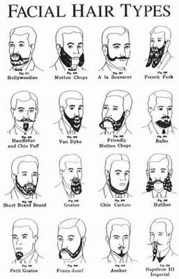 Types of facial hair