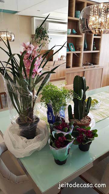 decore-com-plantas