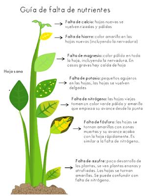 Red Iberica de permacultura