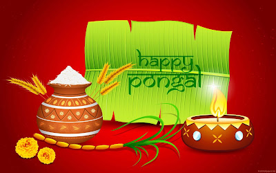 pongal-festival-also-known-as-makar-sankrant