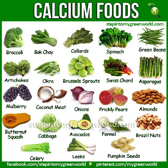 List Of Foods High In Calcium Non Dairy