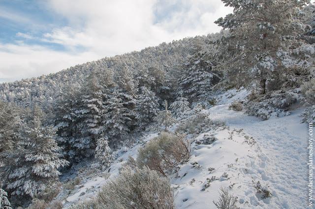 Sierra Madrid Ruta circular raquetas nieve montaña Cotos Valdesqui
