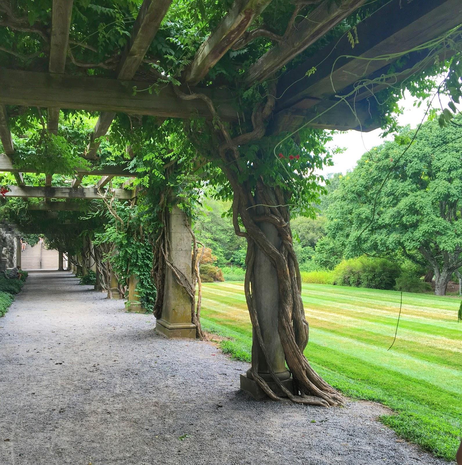 backyard farming the not so secret garden. Black Bedroom Furniture Sets. Home Design Ideas