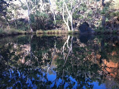 Photo of Bell Gorge with reflections.
