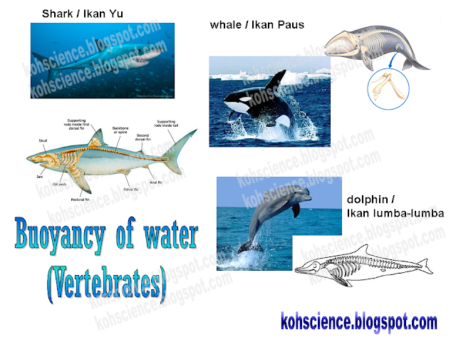 Explore to Koh's Science World ( Blog Sains): September 2012