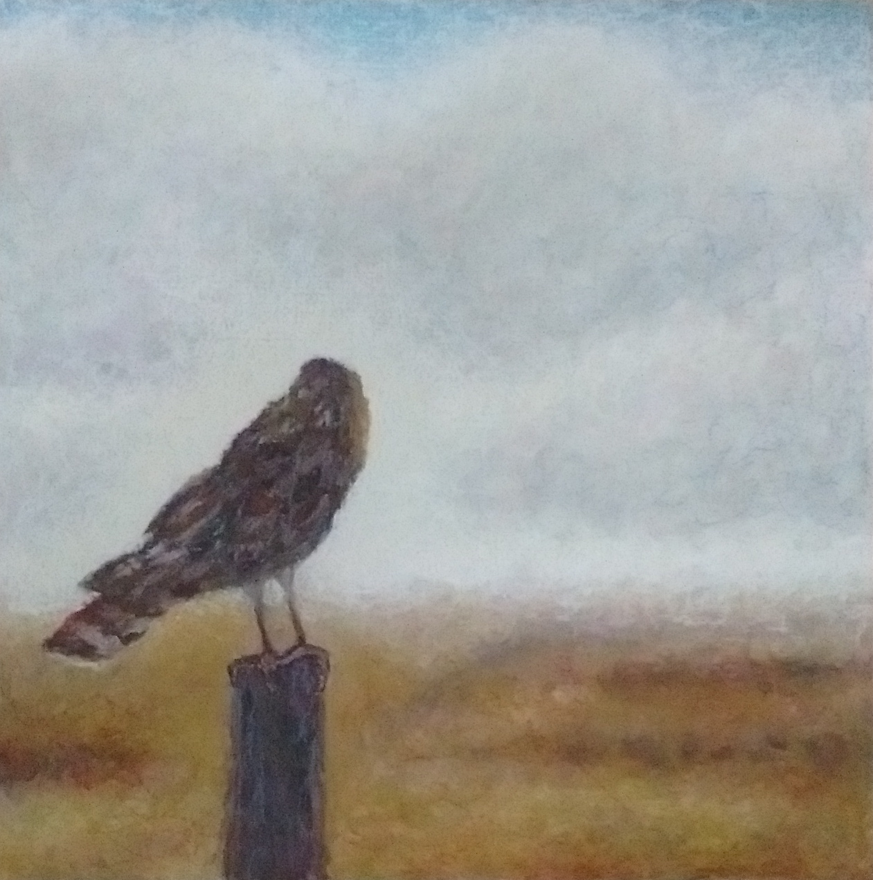 Art Talk: Birds