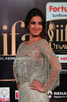 Sonal Chauhan in a stonework Floor Length Silver Designer Gown at IIFA Utsavam Awards March 2017 008.JPG
