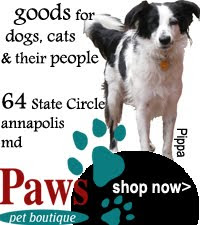 Paws Pet Boutique