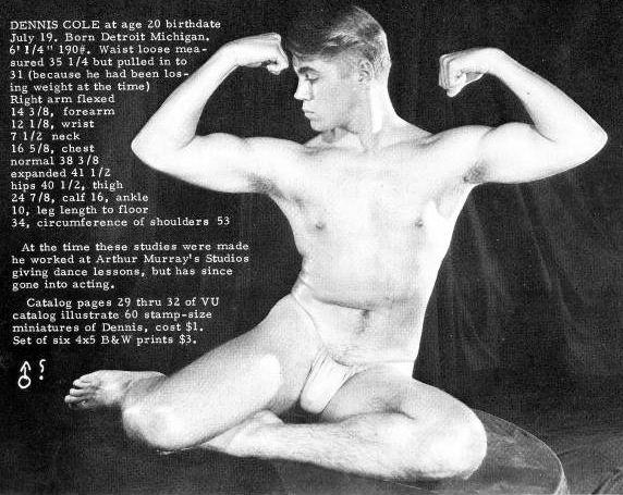 dennis-cole-naked