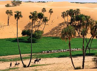 Kebun Hijau Di tengah gurun pasir