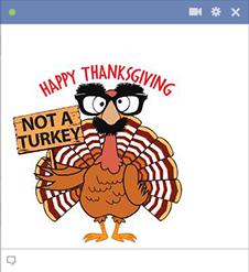 Talking turkey gobble - 3 5