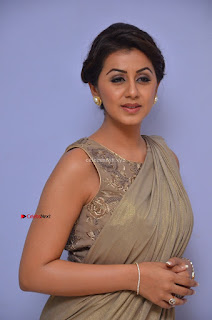 Nikki Galrani in Saree 070.JPG