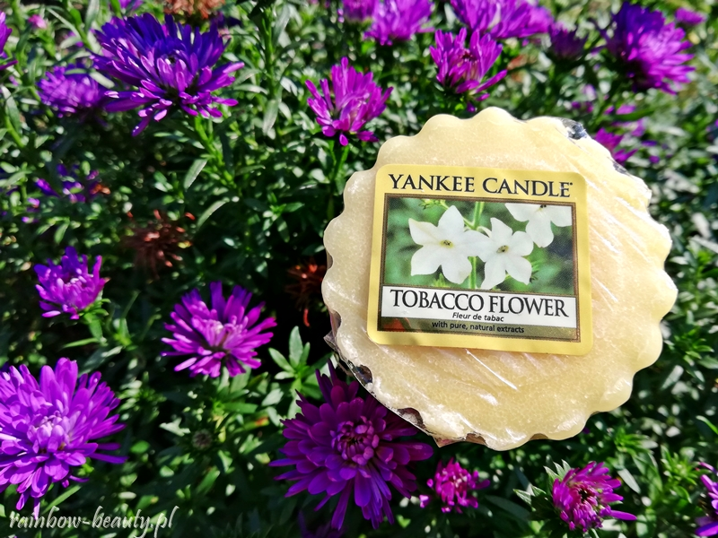 tabacco-flower-yankee-candle