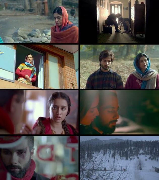 Haider 2014 Hindi 480p BluRay