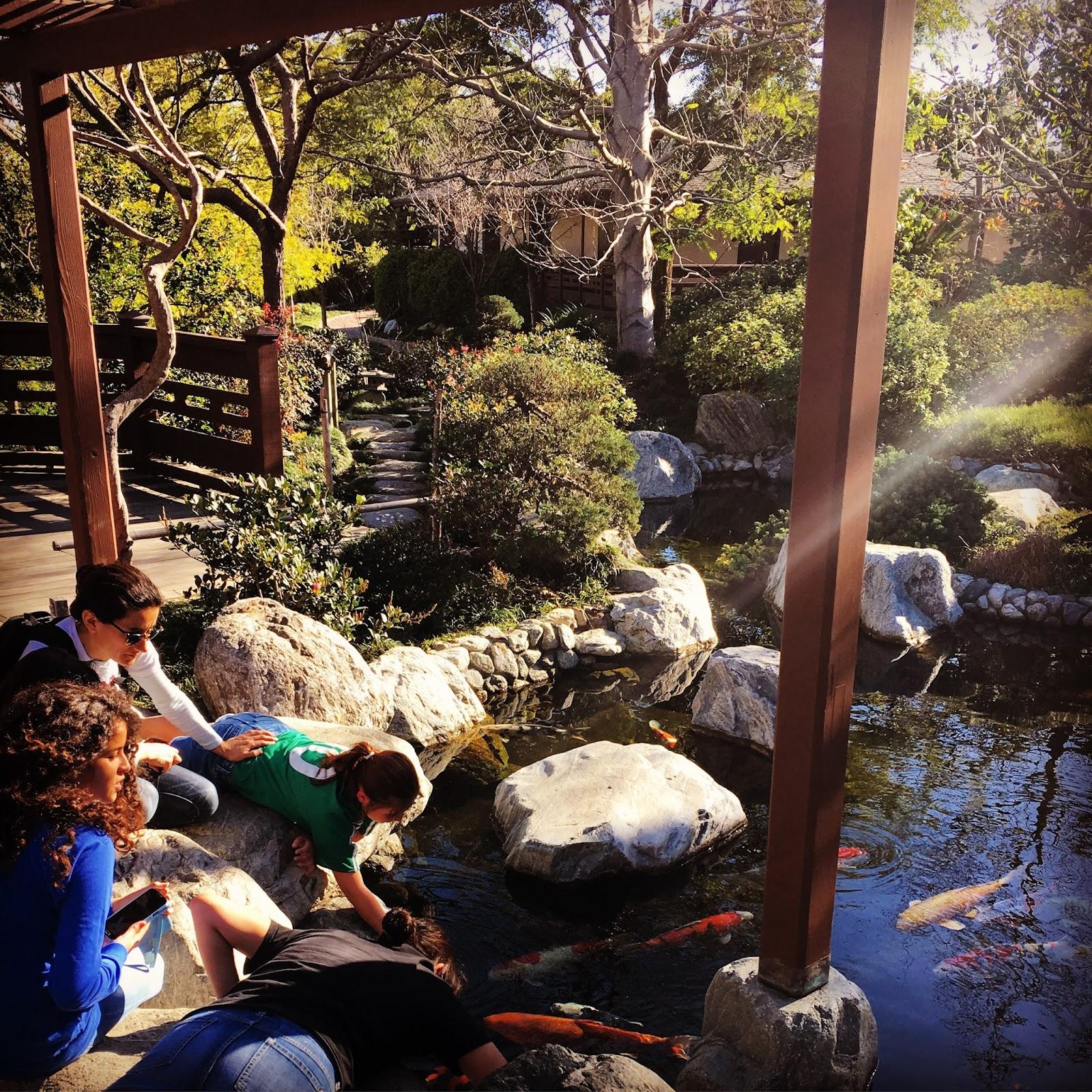 Sensory Overload: Balboa Park - Japanese Friendship Garden