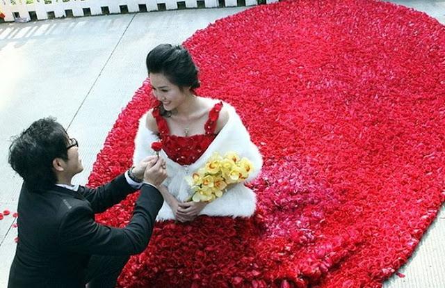 قدم لزوجته فستان   مصنوع من 9999 زهرة في عيد الحب ROSES-DRESS-02.jpg