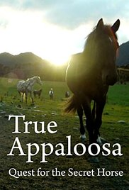 Watch True Appaloosa Online Free 2015 Putlocker