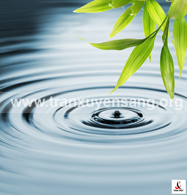 Tấm xuyên sáng in hình giọt nước