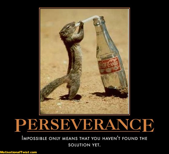 Persistence Motivational Quotes: The Random Rants Of A Superwoman: Perseverance