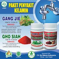 Cara Menyembuhkan Sipilis Menggunakan Ramuan Tradisional, obat alami sipilis bawang putih dan daun sirih