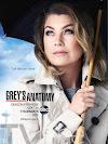 Series Greys Anatomy